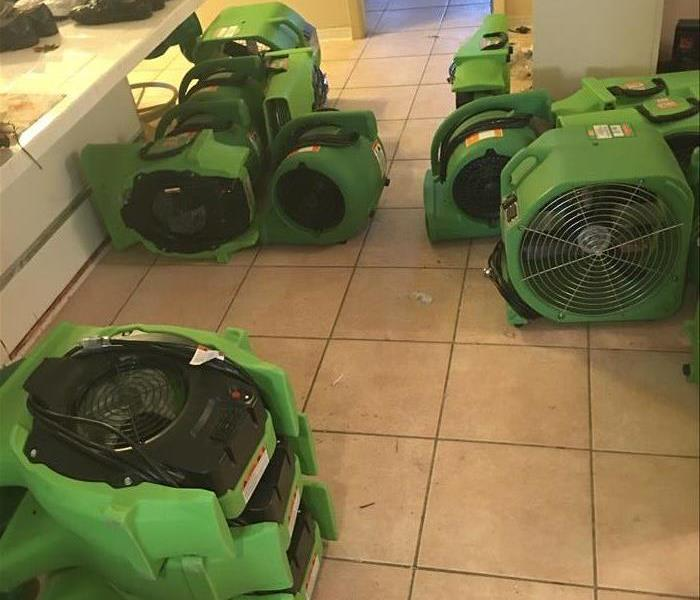 Green drying equipment in staging area of home, now dry