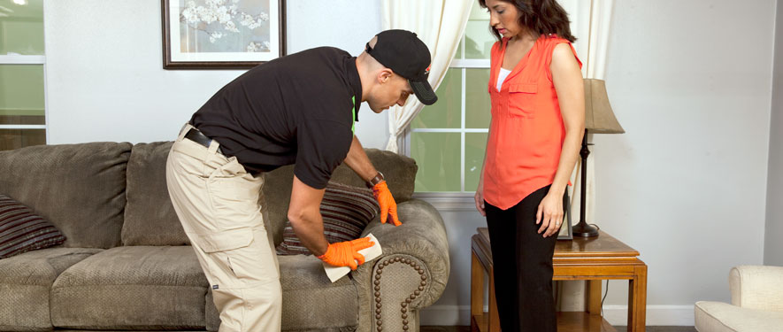 Columbia, TN carpet upholstery cleaning