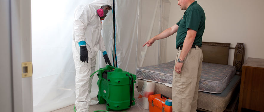 Columbia, TN mold removal process